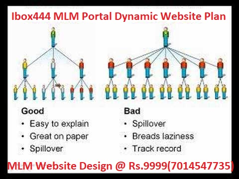 Multi-level_marketing_portal-development-jaipur-ibox444.jpg