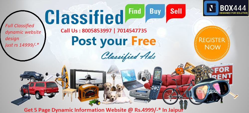 classified-website-design-jaipur.jpg