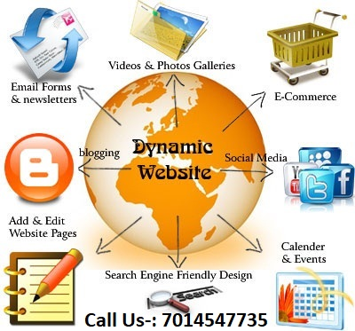 Custom Web Developer Jaipur