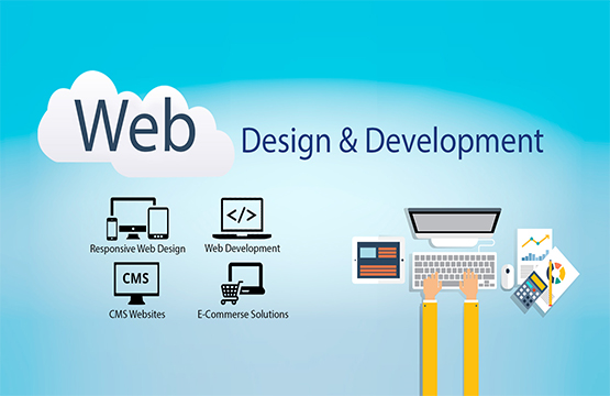 Custom Dynamic Website Work Just Rs. 4999 Jaipur